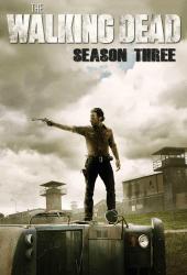 The Walking Dead Season 3 ล่าสยอง ทัพผีดิบ 3