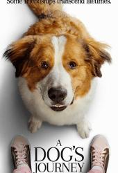 A Dogs Journey (2019) หมา เป้าหมาย และเด็กชายของผม 2